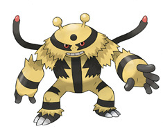 Pokemon Battle Revolution's Electivire  secret codes
