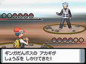 Pocket Monsters Diamond Pearl Platinum Pokemon Dp Nds